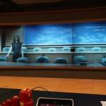 Khannanov ANO IITE Polycom meeting
